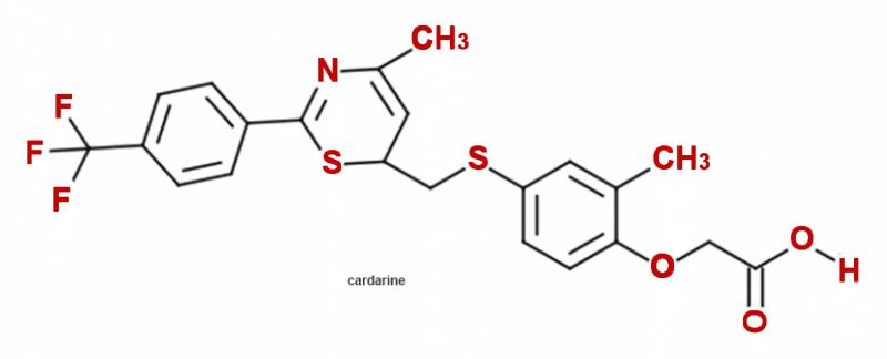 GW 501516 (Cardarine)