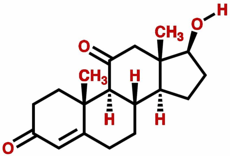 11-Oxo (11-Ketotestosterone)