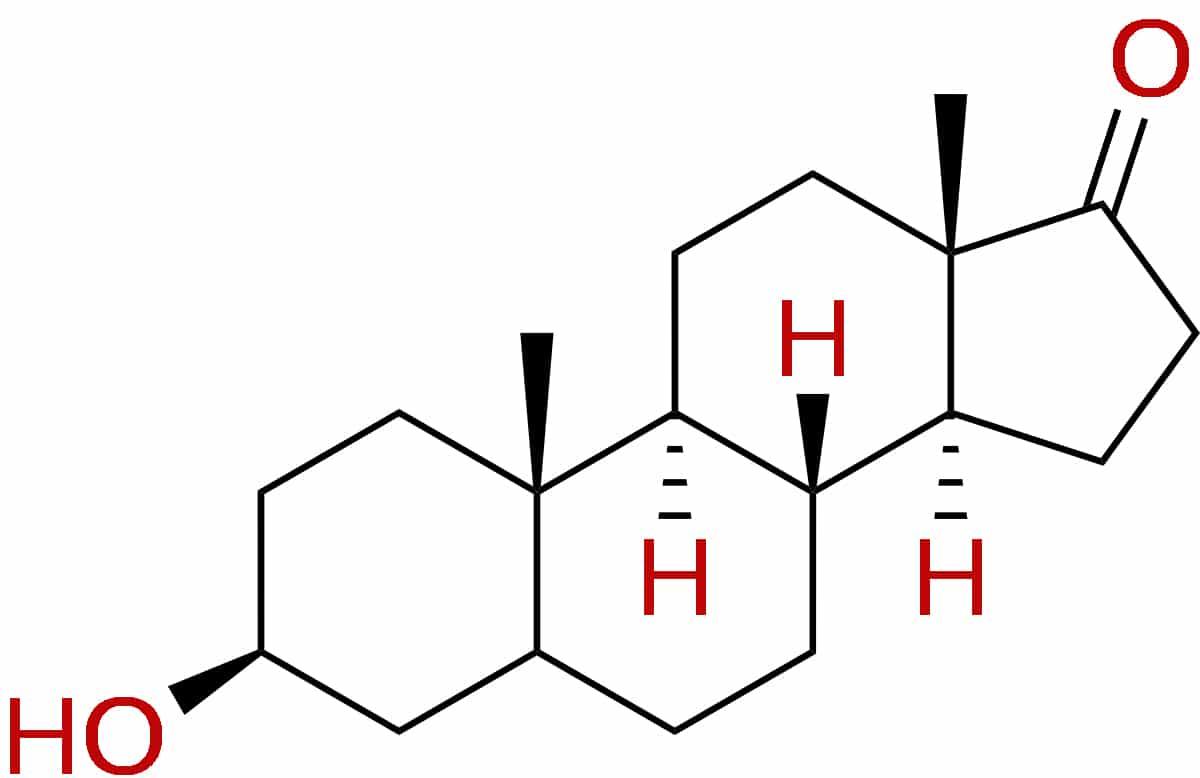 Epi-Andro (Epiandrosterone)